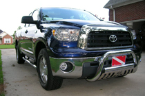 Grille Guard